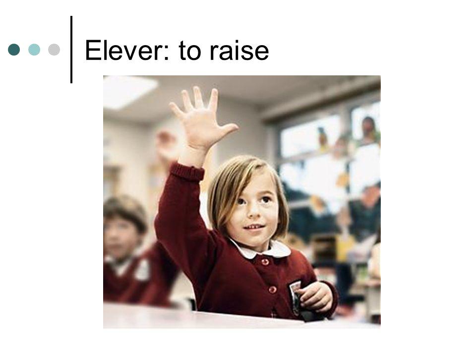 Elever: to raise