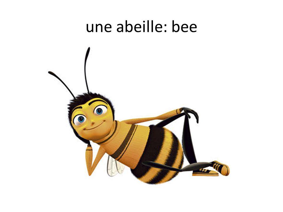 une abeille: bee