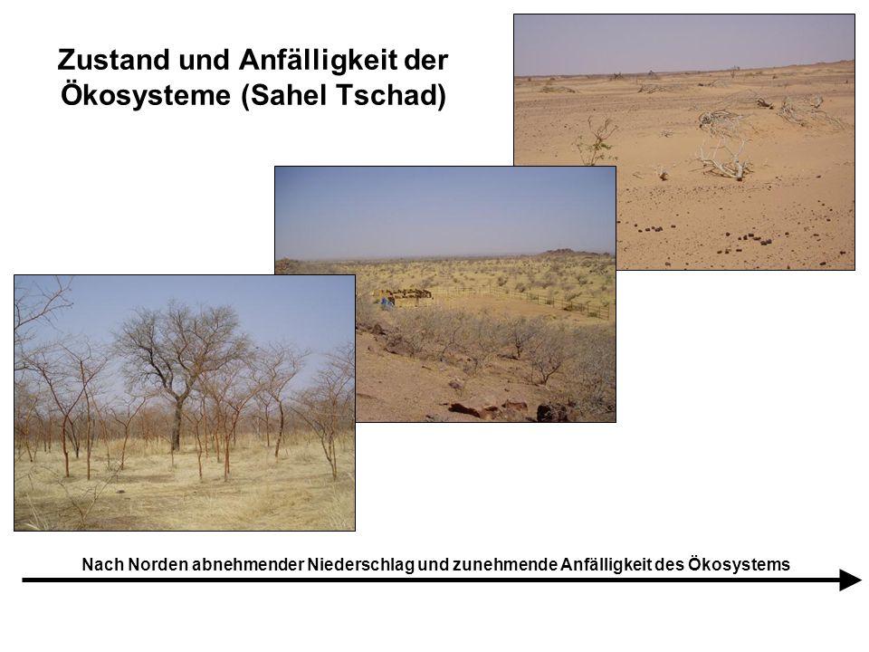 Zustand und Anfälligkeit der Ökosysteme (Sahel Tschad) Nach Norden abnehmender Niederschlag und zunehmende Anfälligkeit des Ökosystems