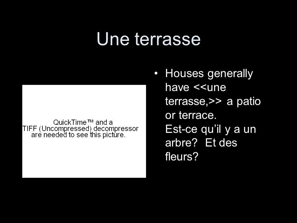 Une terrasse Houses generally have > a patio or terrace. Est-ce quil y a un arbre? Et des fleurs?