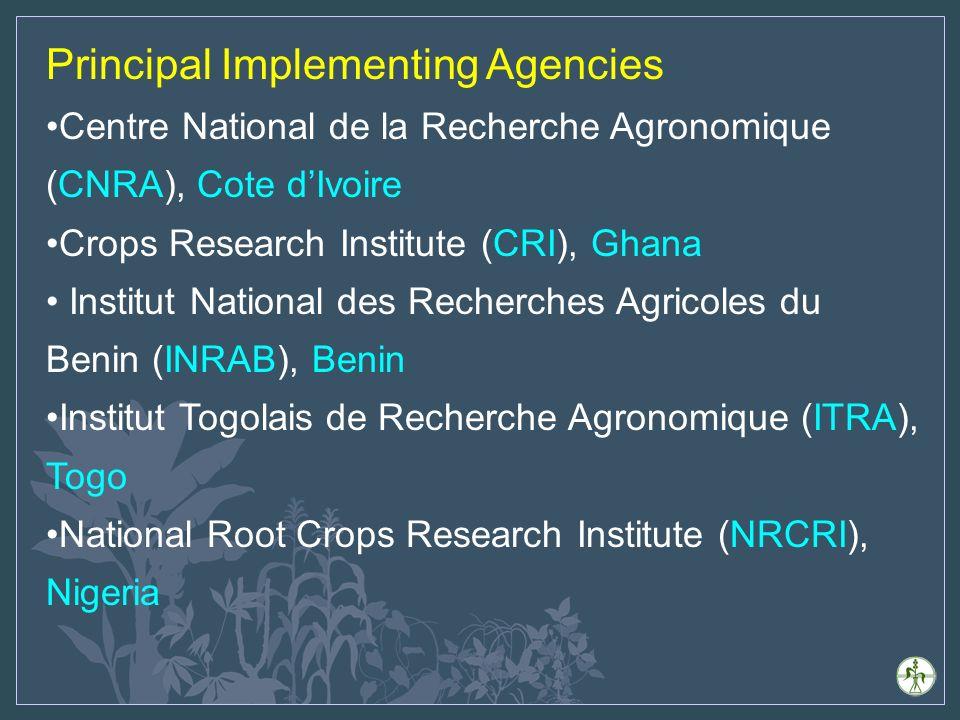 Principal Implementing Agencies Centre National de la Recherche Agronomique (CNRA), Cote dIvoire Crops Research Institute (CRI), Ghana Institut National des Recherches Agricoles du Benin (INRAB), Benin Institut Togolais de Recherche Agronomique (ITRA), Togo National Root Crops Research Institute (NRCRI), Nigeria