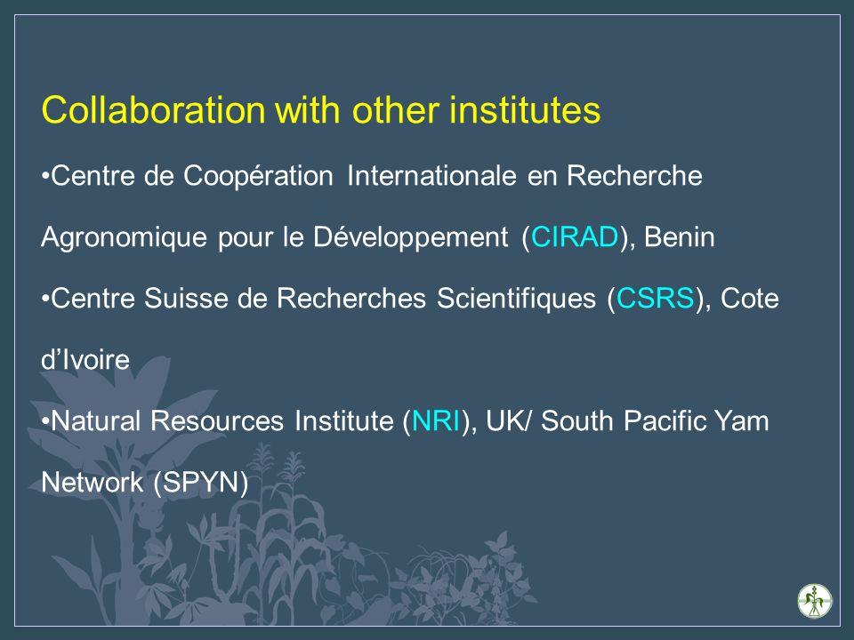 Collaboration with other institutes Centre de Coopération Internationale en Recherche Agronomique pour le Développement (CIRAD), Benin Centre Suisse de Recherches Scientifiques (CSRS), Cote dIvoire Natural Resources Institute (NRI), UK/ South Pacific Yam Network (SPYN)