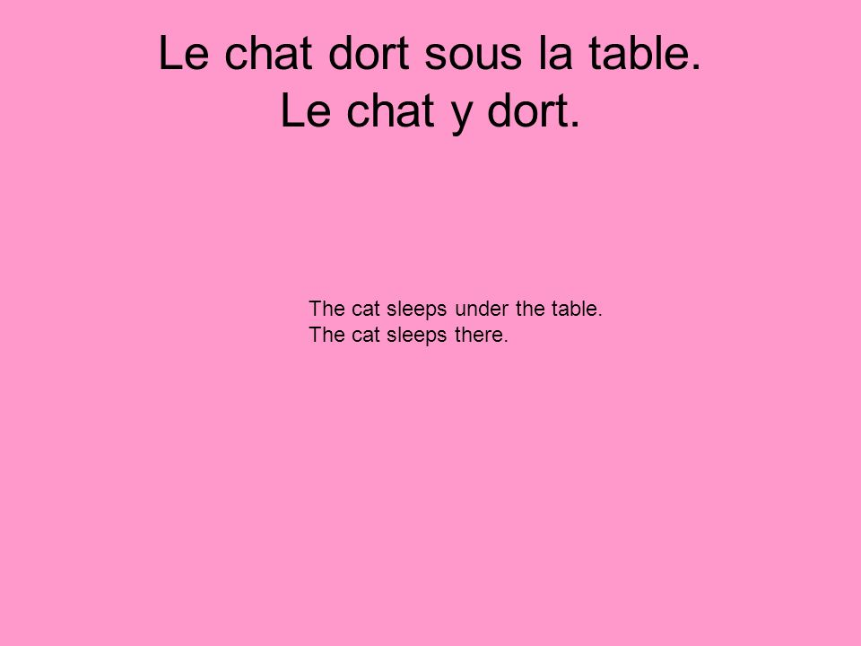 Le chat dort sous la table. Le chat y dort. The cat sleeps under the table. The cat sleeps there.