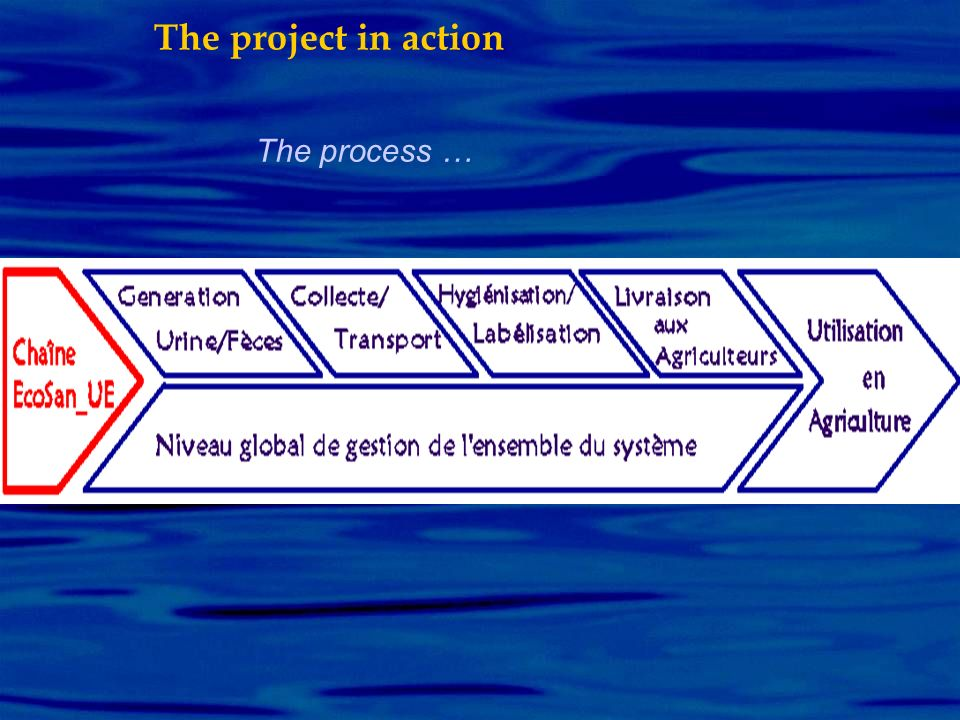The process … The project in action