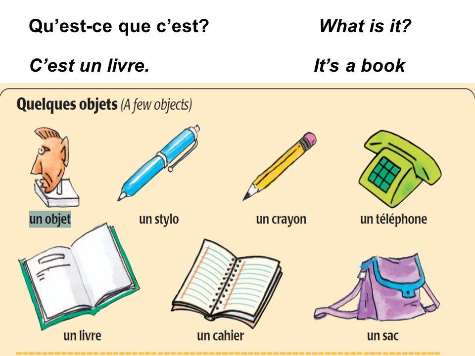 Quest-ce que cest? What is it? Cest un livre. Its a book