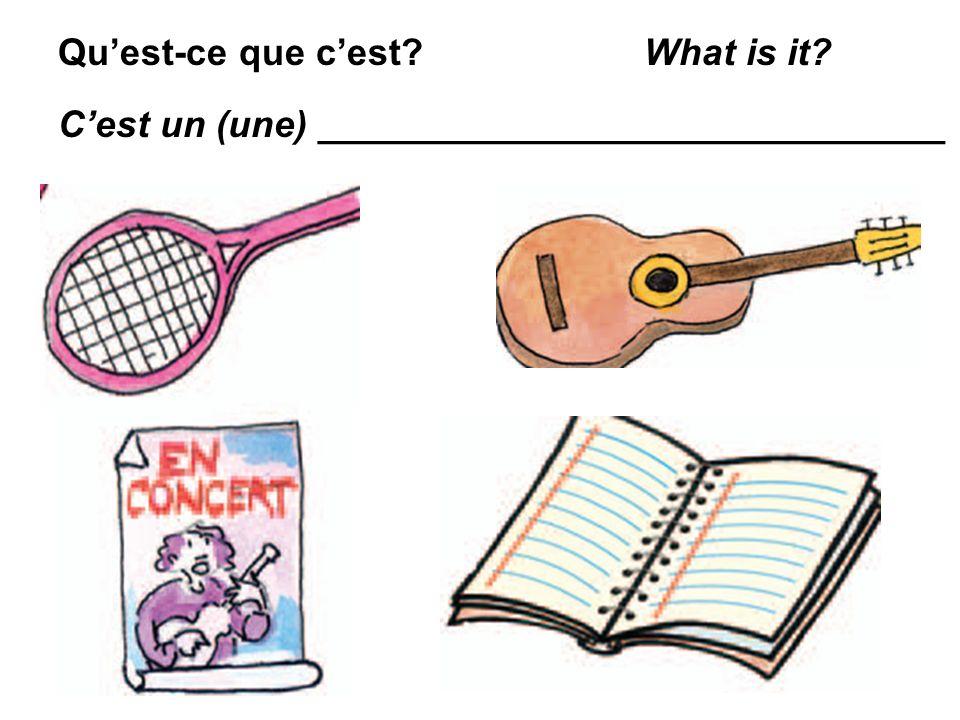 Quest-ce que cest? What is it? Cest un (une) ______________________________