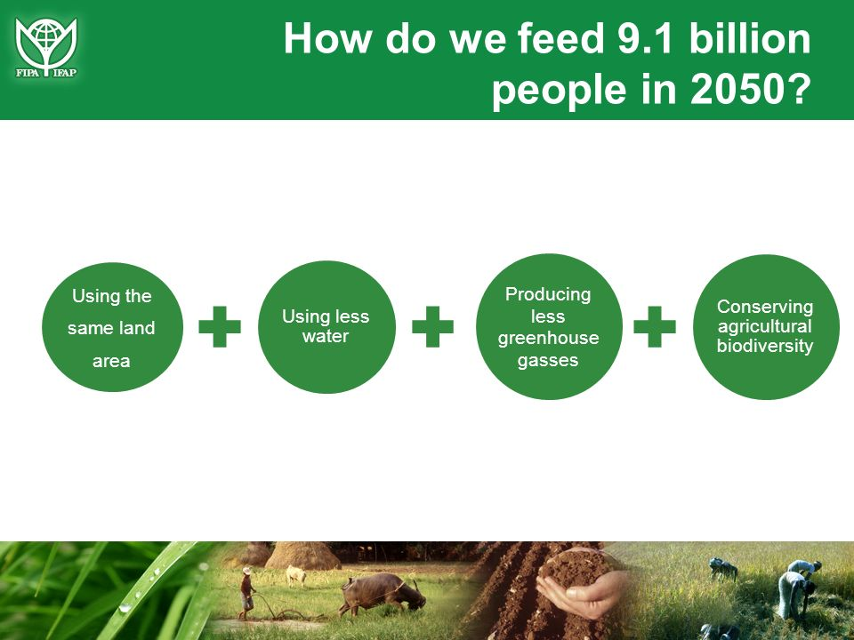 How do we feed 9.1 billion people in 2050? Using the same land area Using less water Producing less greenhouse gasses Conserving agricultural biodiver