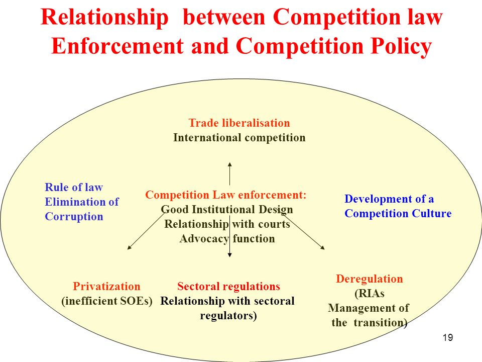 19 Relationship between Competition law Enforcement and Competition Policy Competition Law enforcement: Good Institutional Design Relationship with co