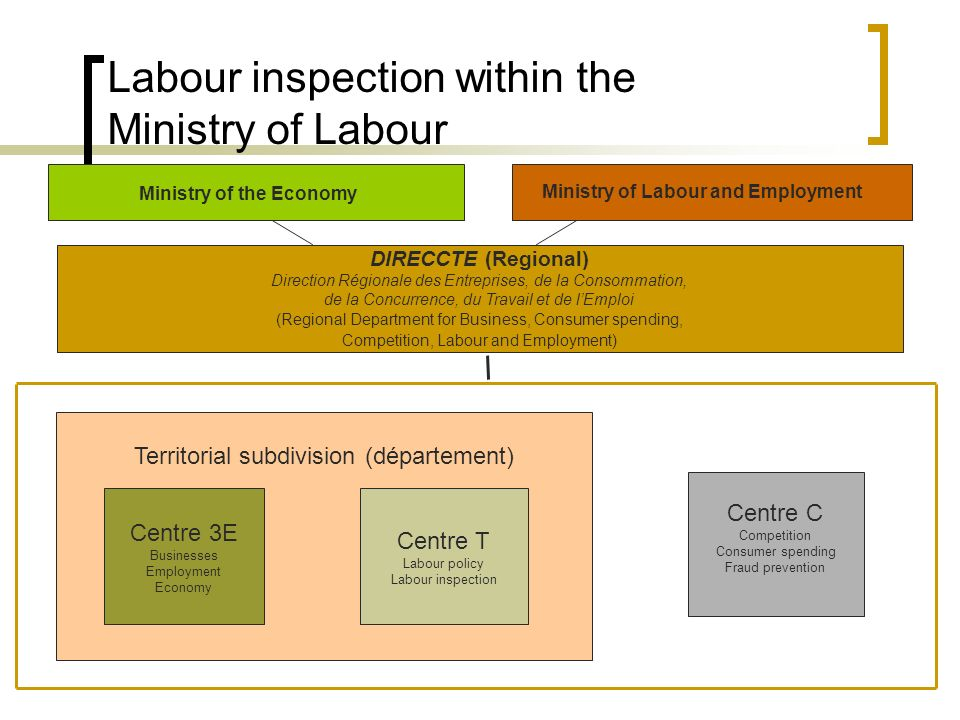 Labour inspection within the Ministry of Labour Centre C Competition Consumer spending Fraud prevention DIRECCTE (Regional) Direction Régionale des Entreprises, de la Consommation, de la Concurrence, du Travail et de lEmploi (Regional Department for Business, Consumer spending, Competition, Labour and Employment) Ministry of the Economy Ministry of Labour and Employment Territorial subdivision (département) Centre T Labour policy Labour inspection Centre 3E Businesses Employment Economy