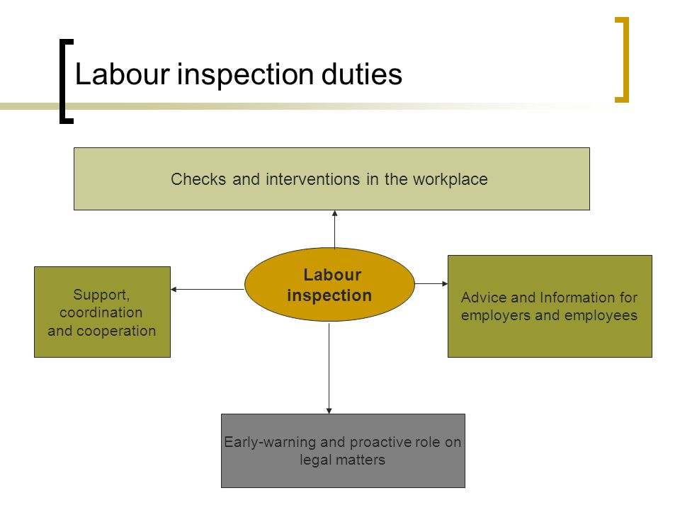 Labour inspection duties Labour inspection Checks and interventions in the workplace Advice and Information for employers and employees Support, coordination and cooperation Early-warning and proactive role on legal matters