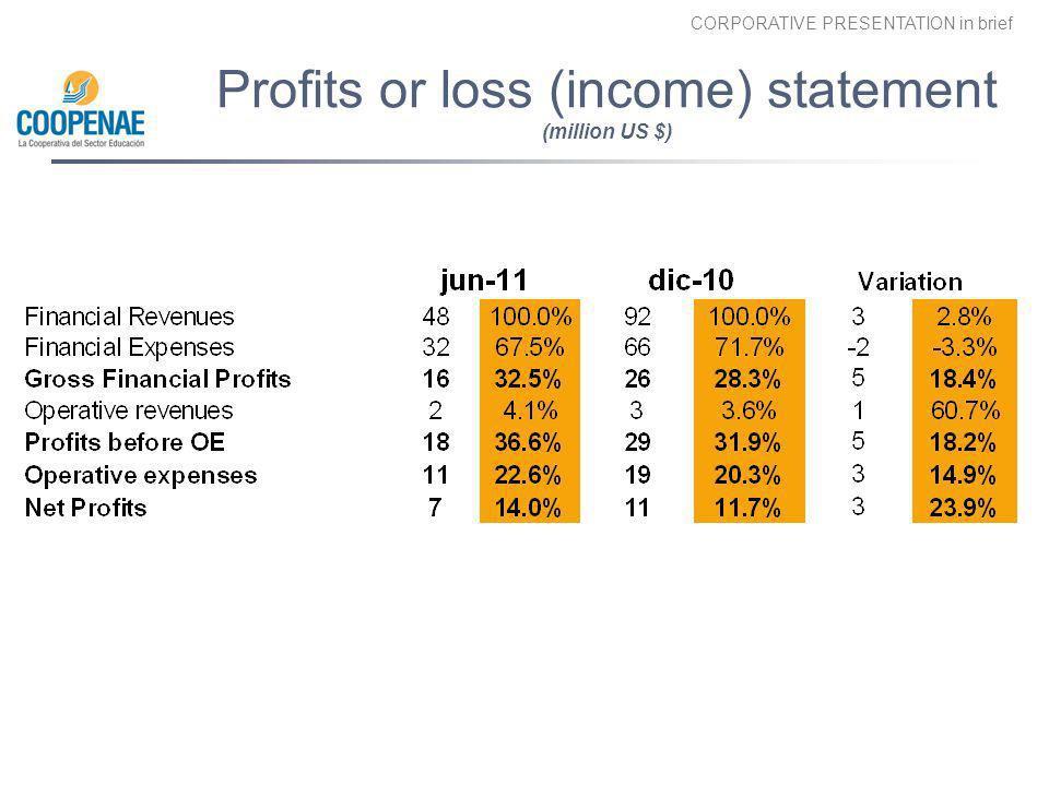 CORPORATIVE PRESENTATION in brief Profits or loss (income) statement (million US $) d d