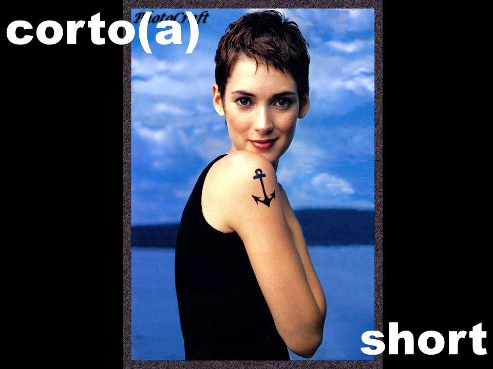 short corto(a)