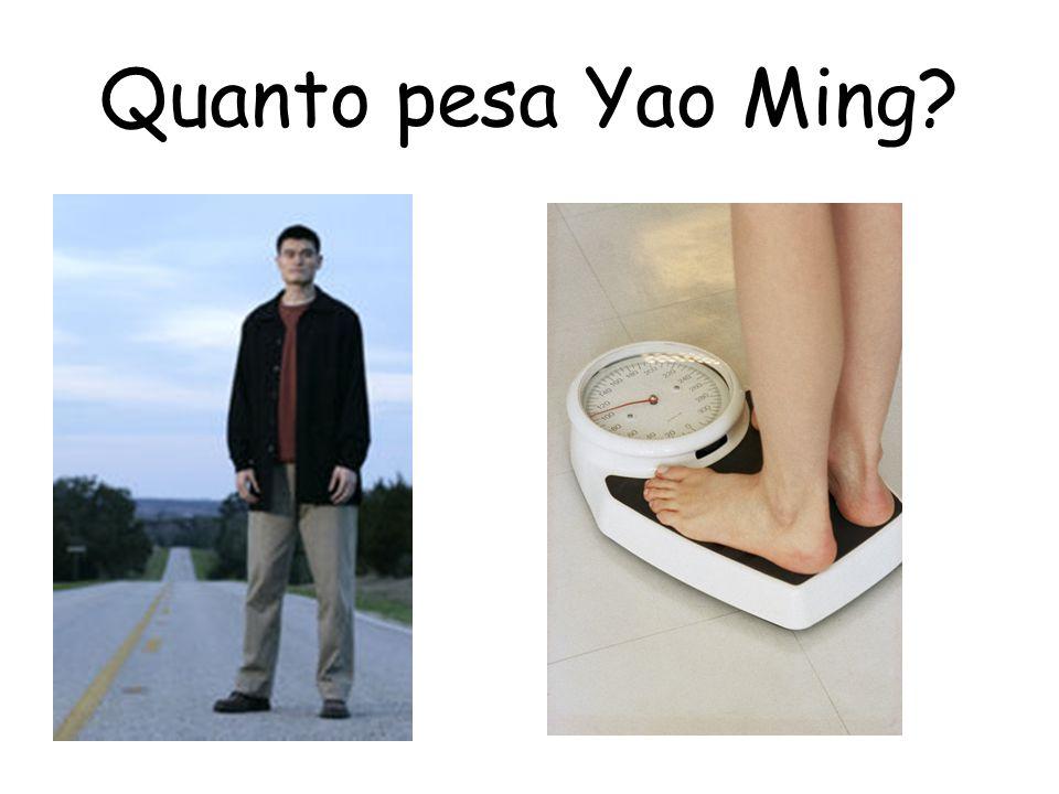 Quanto pesa Yao Ming