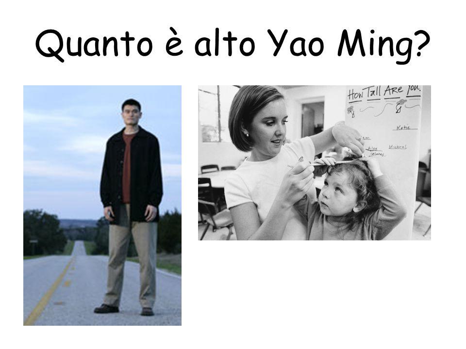 Quanto è alto Yao Ming