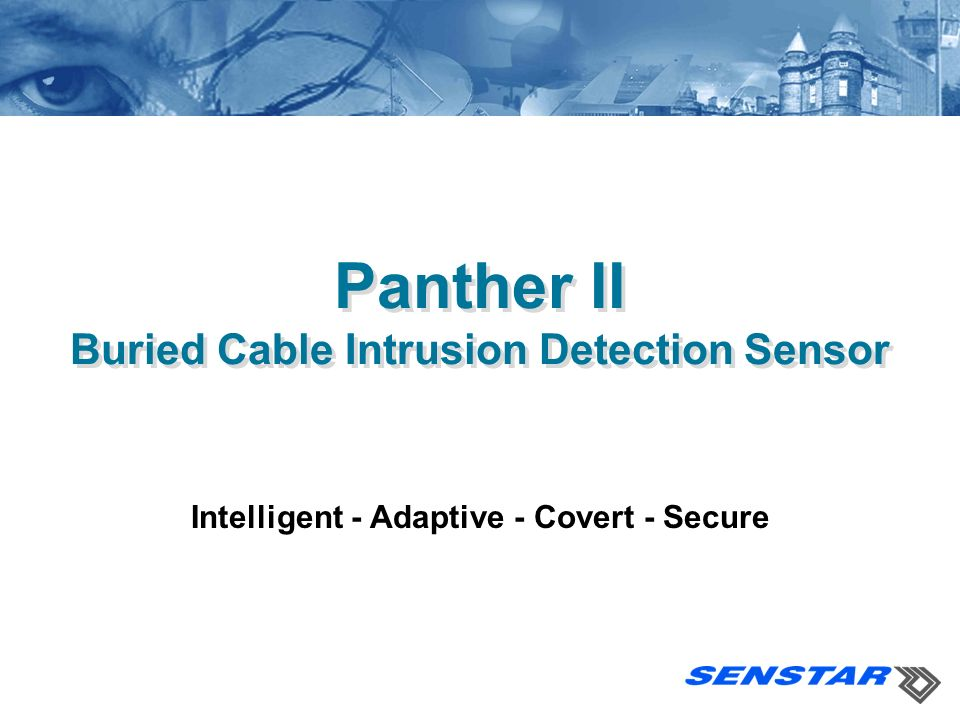 Panther II Buried Cable Intrusion Detection Sensor Intelligent - Adaptive - Covert - Secure