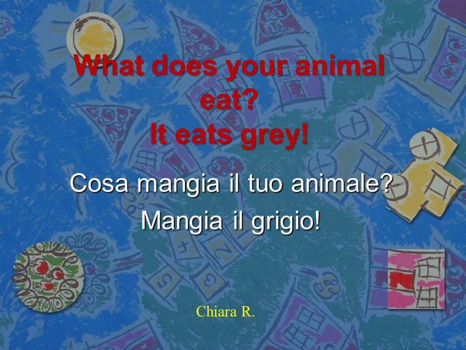Where are you from? Im Italy! Da dove vieni? Io sono lItalia! Matilde
