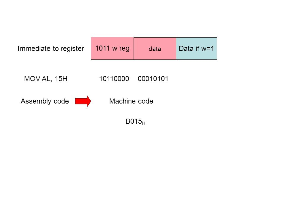 Immediate to register 1011 w reg data Data if w=1 MOV AL, 15H1011000000010101 Assembly codeMachine code B015 H