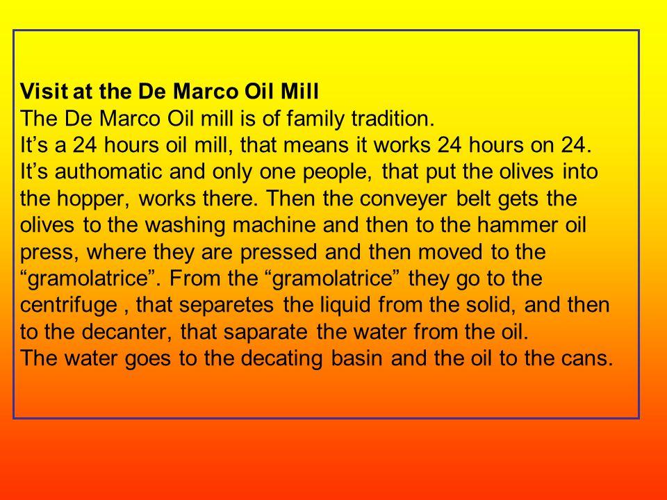 VISITA AL FRANTOIO DE MARCO Il frantoio De Marco è di tradizione familiare. È un frantoio h 24,cioè che lavora 24 ore su 24. È automatico e vi lavora