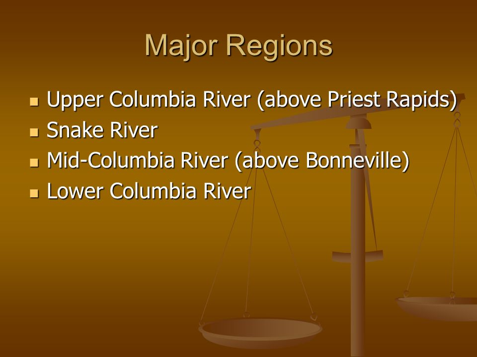 Major Regions Upper Columbia River (above Priest Rapids) Upper Columbia River (above Priest Rapids) Snake River Snake River Mid-Columbia River (above
