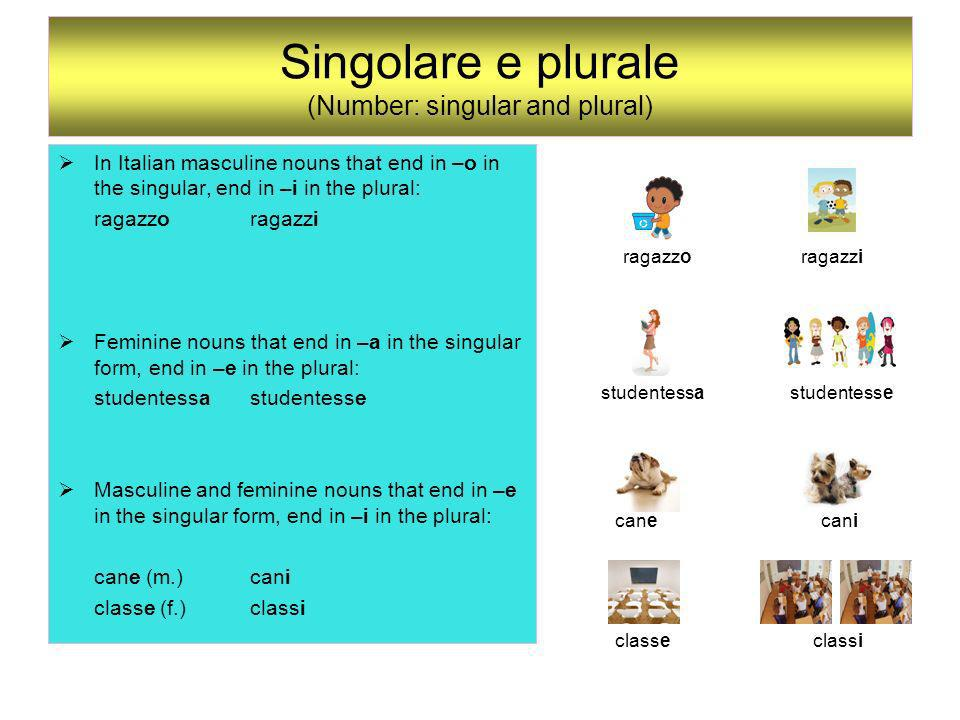 Singolare e plurale (Number: singular and plural) In Italian masculine nouns that end in –o in the singular, end in –i in the plural: ragazzoragazzi F