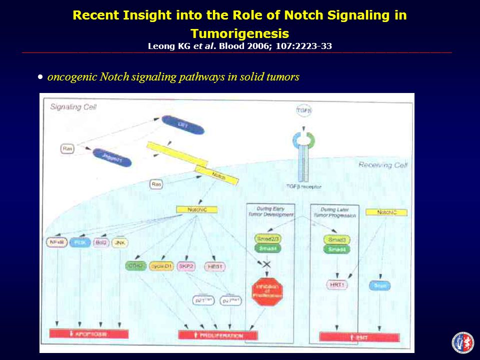 Recent Insight into the Role of Notch Signaling in Tumorigenesis Leong KG et al.
