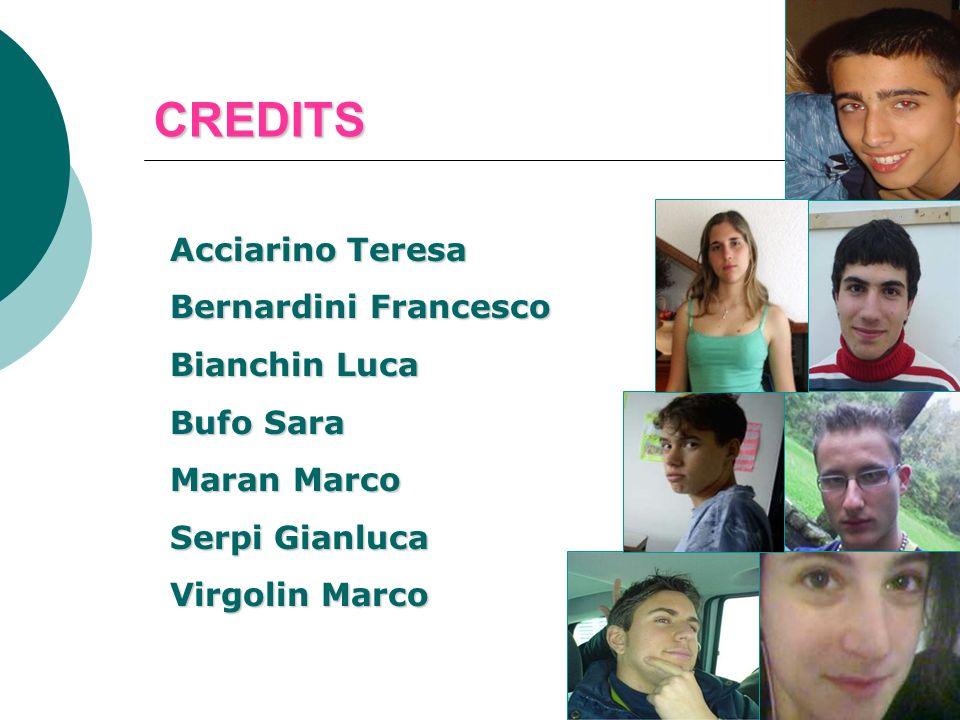 Acciarino Teresa Bernardini Francesco Bianchin Luca Bufo Sara Maran Marco Serpi Gianluca Virgolin Marco CREDITS