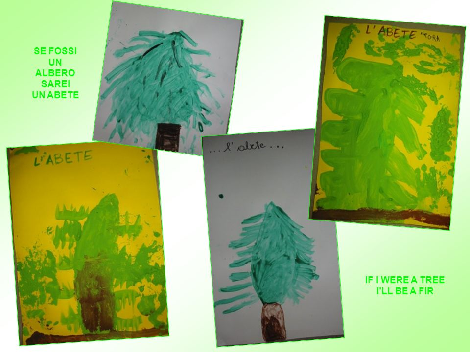 WE CHOOSED THE TREE WE WOULD LIKE TO BE AND WE DREW IT