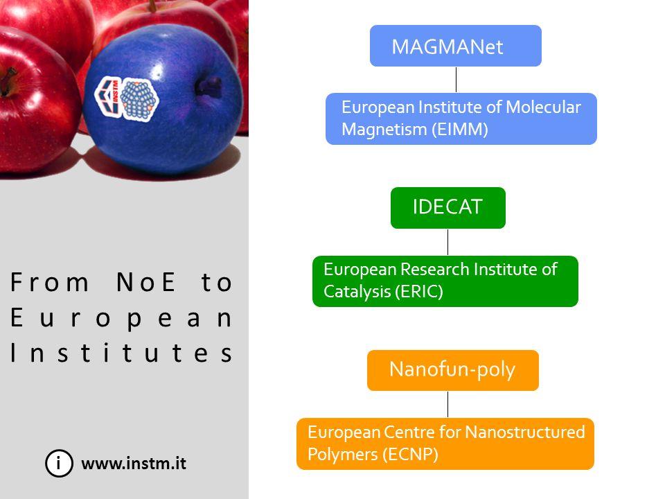 From NoE to European Institutes i www.instm.it MAGMANet IDECAT Nanofun-poly European Institute of Molecular Magnetism (EIMM) European Research Institu