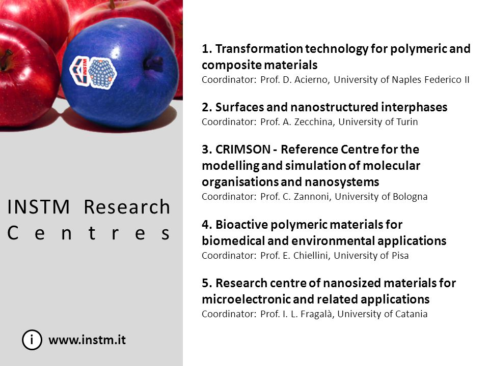 From NoE to European Institutes i www.instm.it MAGMANet IDECAT Nanofun-poly European Institute of Molecular Magnetism (EIMM) European Research Institute of Catalysis (ERIC) European Centre for Nanostructured Polymers (ECNP)
