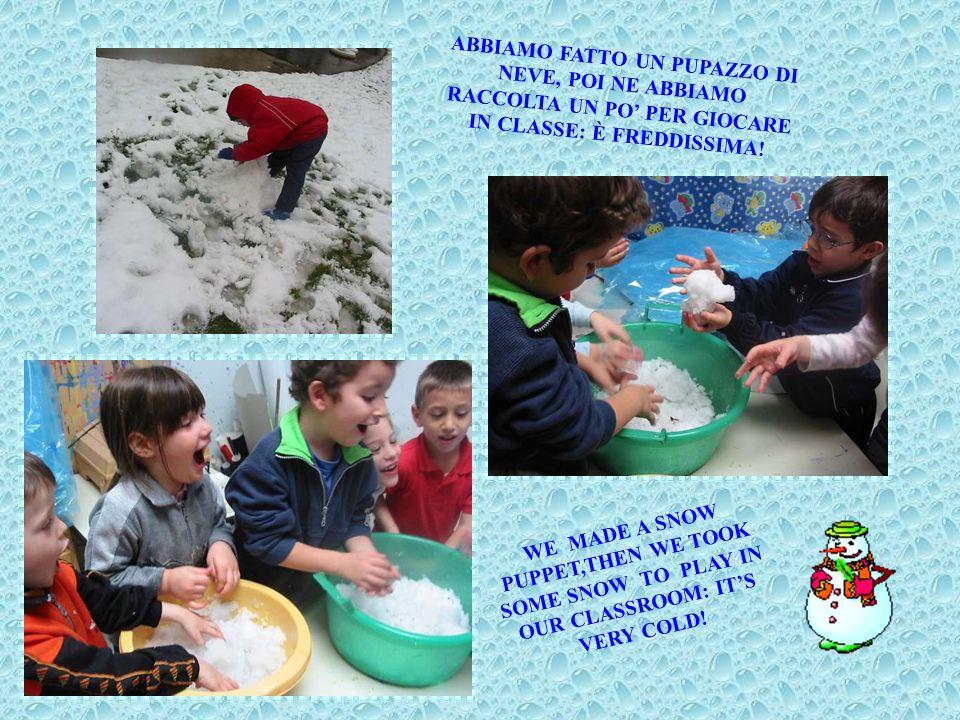 DOPO TANTO TEMPO, FINALMENTE È ARRIVATA LA NEVE! AFTER A LONG TIME, AT LAST WE HAD A SNOWFALL!