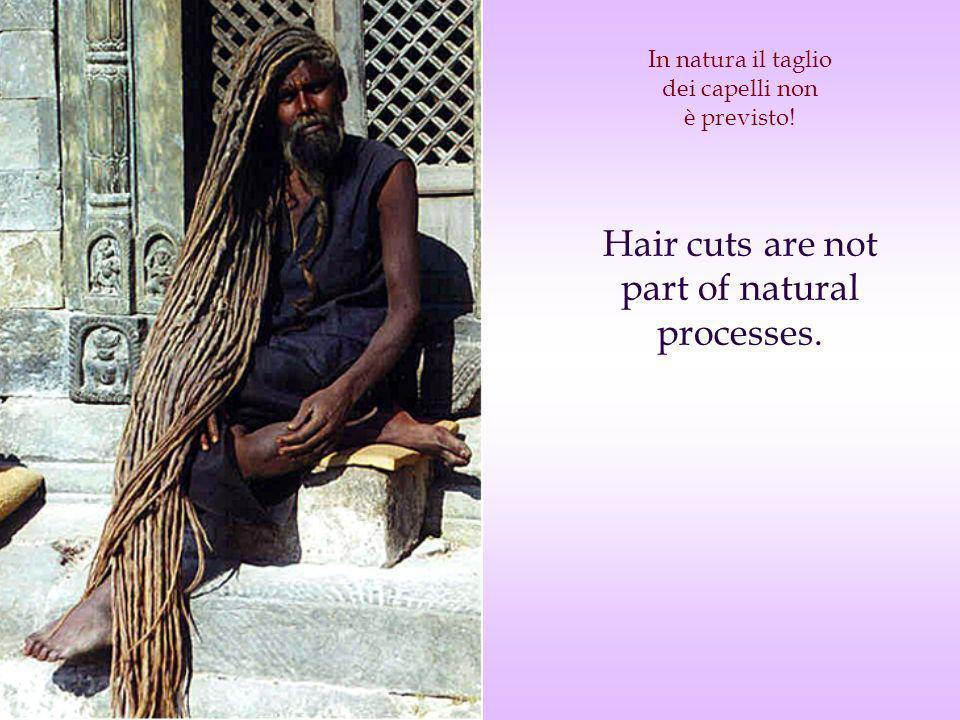 In natura il taglio dei capelli non è previsto! Hair cuts are not part of natural processes.