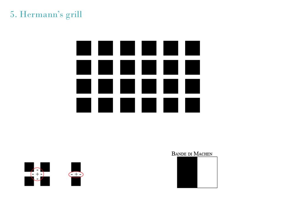 5. Hermanns grill
