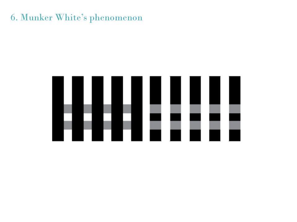 6. Munker Whites phenomenon