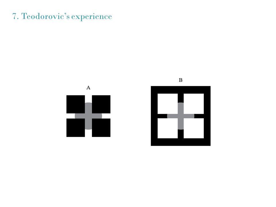 7. Teodorovics experience