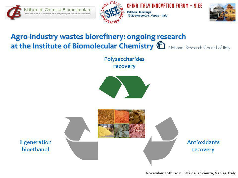 Polysaccharides recovery II generation bioethanol Antioxidants recovery Agro-industry wastes biorefinery: ongoing research at the Institute of Biomole