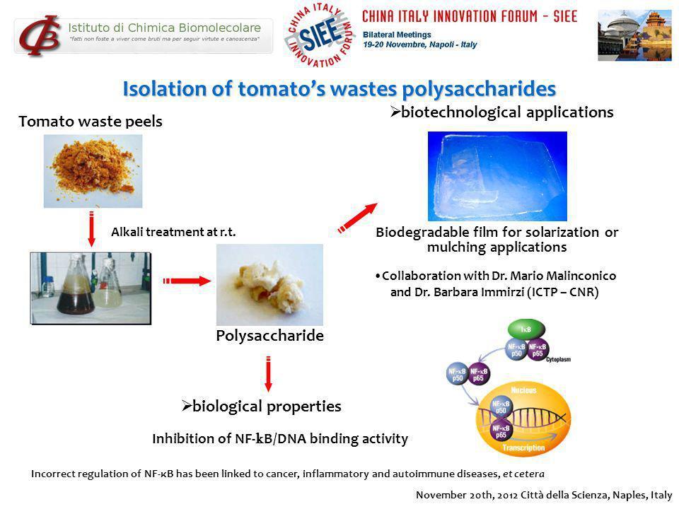 November 20th, 2012 Città della Scienza, Naples, Italy Isolation of tomatos wastes polysaccharides Tomato waste peels Alkali treatment at r.t. Polysac