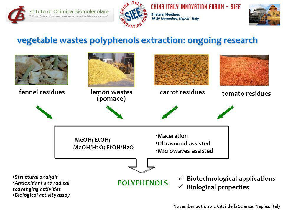 MeOH; EtOH; MeOH/H2O; EtOH/H2O POLYPHENOLS vegetable wastes polyphenols extraction: ongoing research Structural analysis Antioxidant and radical scave