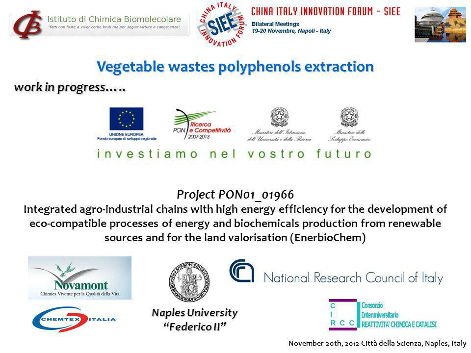 Vegetable wastes polyphenols extraction Project PON01_01966 Integrated agro-industrial chains with high energy efficiency for the development of eco-c