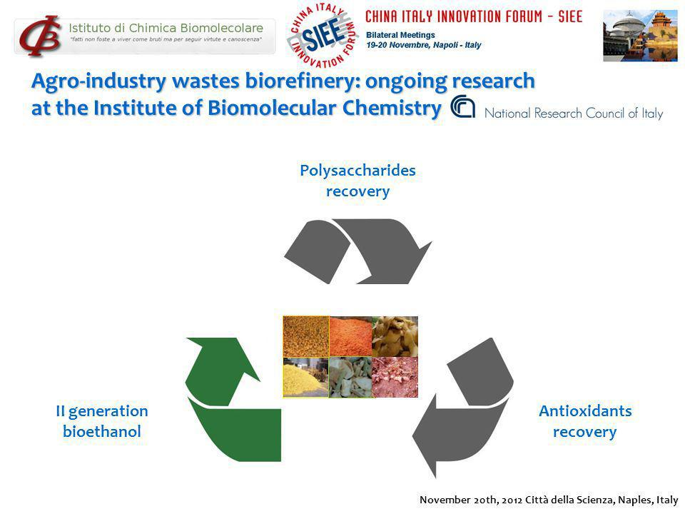 Agro-industry wastes biorefinery: ongoing research at the Institute of Biomolecular Chemistry Polysaccharides recovery II generation bioethanol Antiox