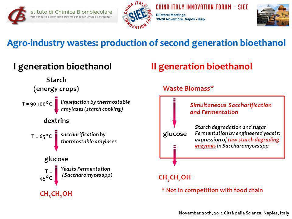 Yeasts Fermentation (Saccharomyces spp) I generation bioethanol dextrins CH 3 CH 2 OH Agro-industry wastes: production of second generation bioethanol