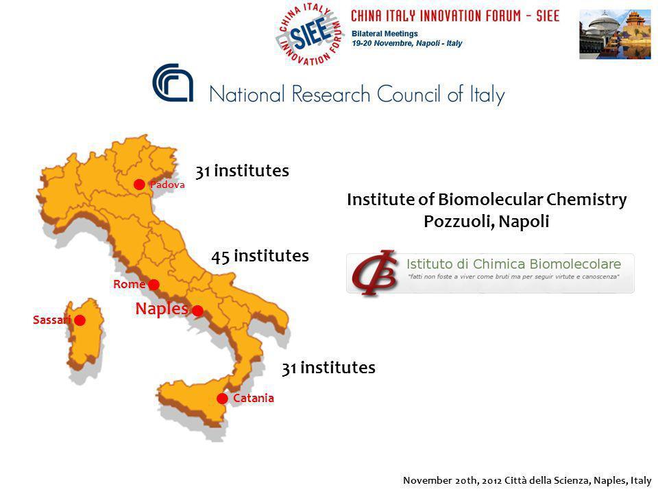 31 institutes 45 institutes Naples Rome Sassari Catania Padova Institute of Biomolecular Chemistry Pozzuoli, Napoli November 20th, 2012 Città della Sc