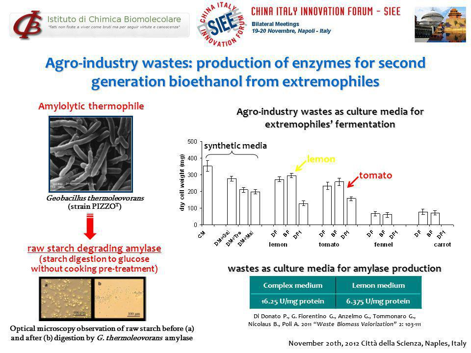 synthetic media Agro-industry wastes as culture media for extremophiles fermentation Di Donato P., G. Fiorentino G., Anzelmo G., Tommonaro G., Nicolau