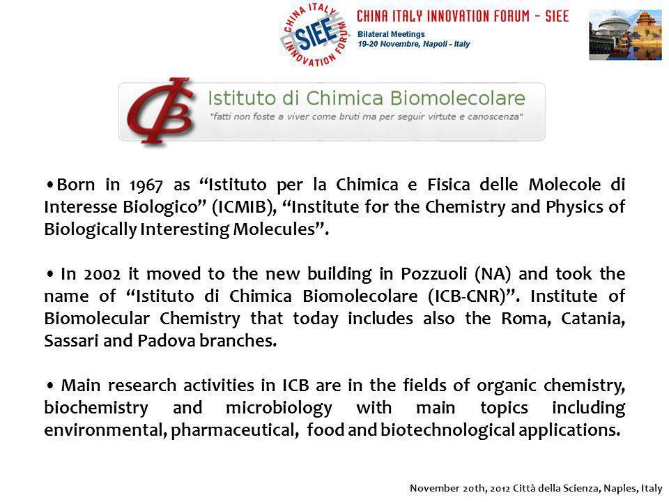 Born in 1967 as Istituto per la Chimica e Fisica delle Molecole di Interesse Biologico (ICMIB), Institute for the Chemistry and Physics of Biologicall