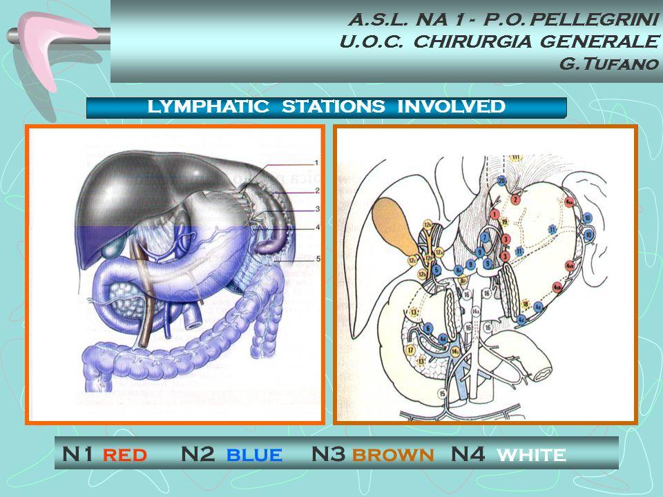 A.S.L. NA 1 - P.O. PELLEGRINI U.O.C. CHIRURGIA GENERALE G.Tufano N1 red N2 blue N3 brown N4 white LYMPHATIC STATIONS INVOLVED