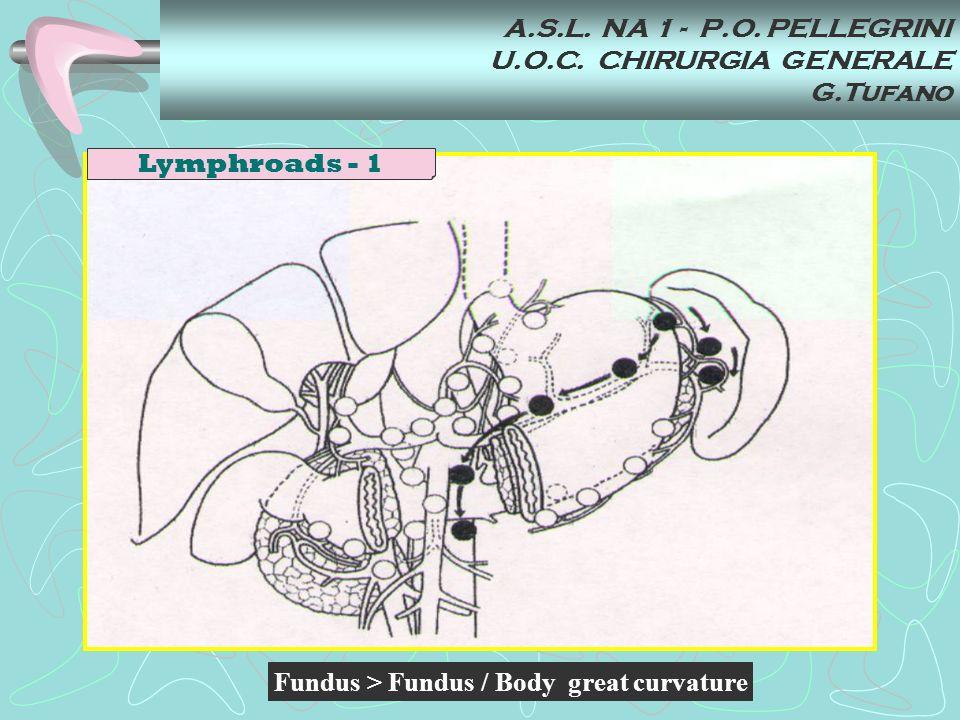 A.S.L. NA 1 - P.O. PELLEGRINI U.O.C. CHIRURGIA GENERALE G.Tufano Fundus > Fundus / Body great curvature Lymphroads - 1