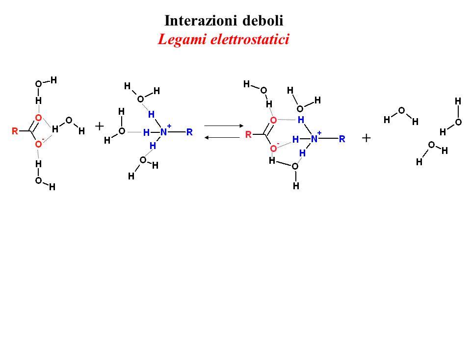 Interazioni deboli Legami elettrostatici + +