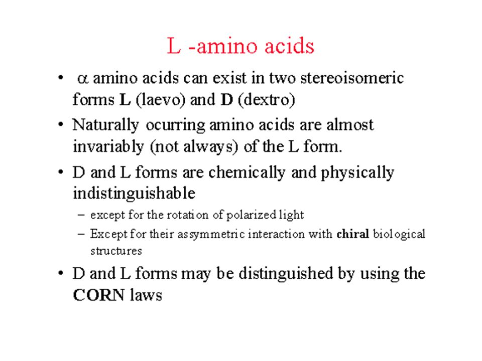 The isomers of amino acids L-Alanine D-Alanine CO R N N R Only L-isomers are found in proteins; L=LIVING;D = DEAD