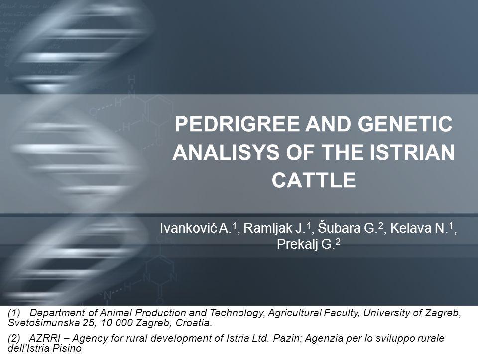 PEDRIGREE AND GENETIC ANALISYS OF THE ISTRIAN CATTLE Ivanković A. 1, Ramljak J. 1, Šubara G. 2, Kelava N. 1, Prekalj G. 2 (1) Department of Animal Pro