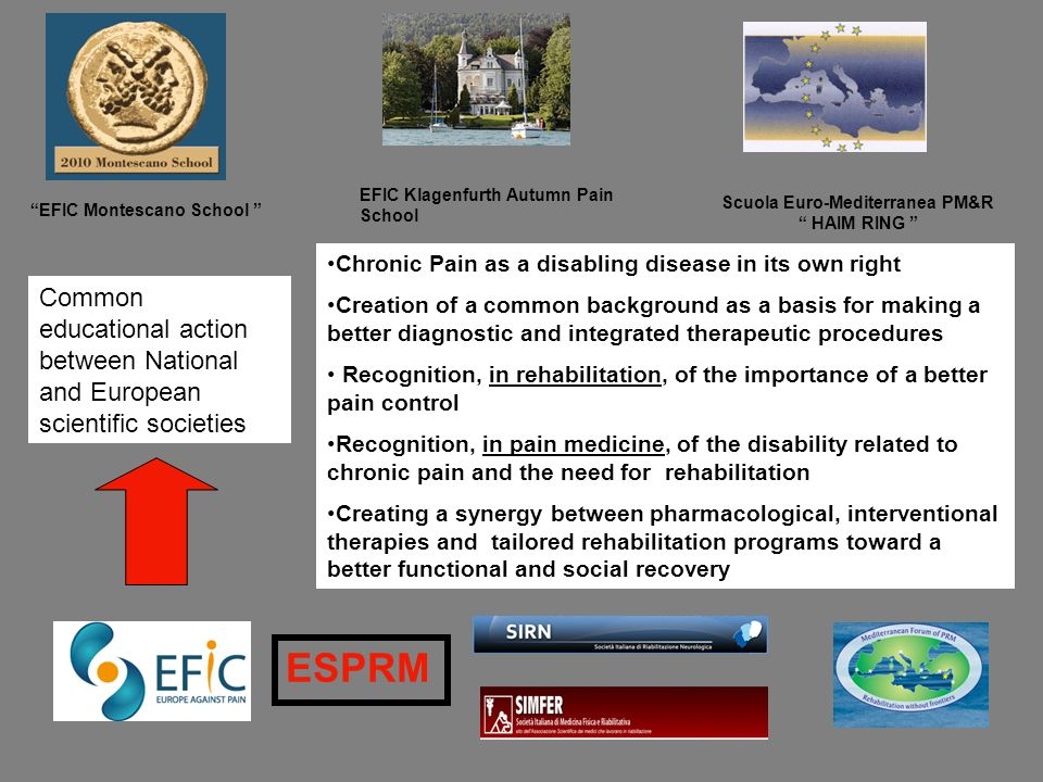Scuola Euro-Mediterranea PM&R HAIM RING EFIC Montescano School EFIC Klagenfurth Autumn Pain School Chronic Pain as a disabling disease in its own righ
