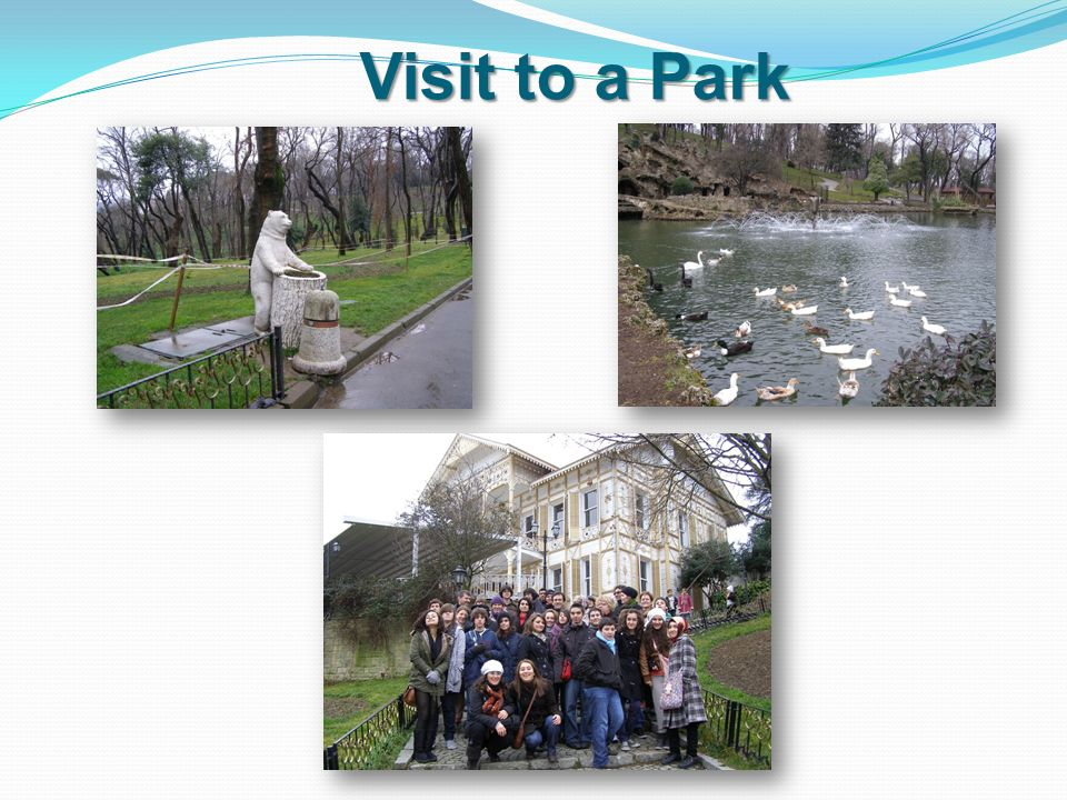Visit to a Park